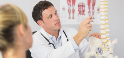 врач мужчина и макет позвоночника
