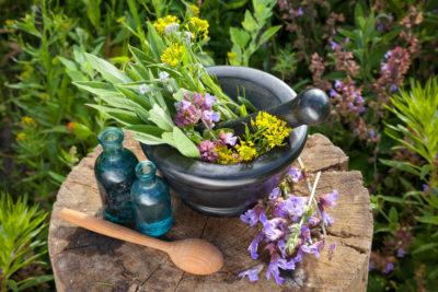 травы и масла для компрессов