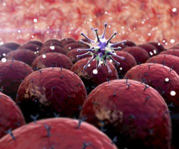 инфекции и болезни крови