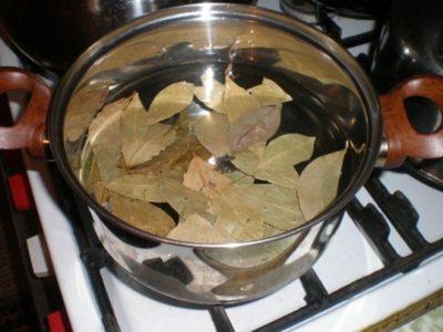 приготовление лаврового листа