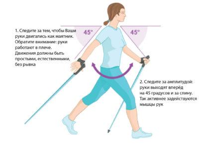 правила скандинавской ходьбы