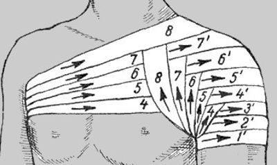 Изображение - Какие суставы надо иммобилизировать при переломе плеча povyazkanaplechev4wg5t3w4543-400x238