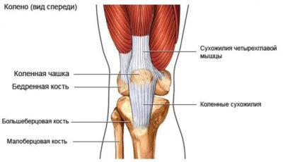 Тендинит коленного сустава